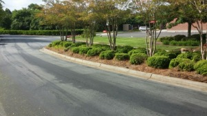 Pine needles, mulch, ornamentals, we can do it all!