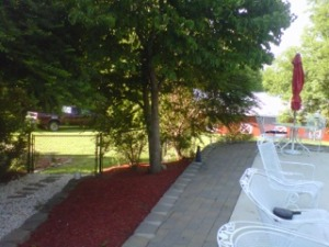 landscaping pics 5